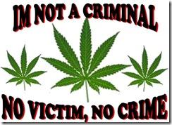 ImNotCriminal