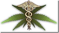 medical-marijuana[1]